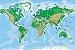 Adesivo Mapa-Múndi - Topográfico - Imagem 1