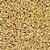 Malte Pale Ale - 5,5 a 7,5 EBC - Agrária - Imagem 1