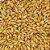 Malte Carared 40 - 60 - Imagem 1
