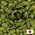 Lúpulo Sorachi Ace - Imagem 1