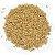 Malte Pale Ale - 7 a 10 EBC - Imagem 3