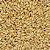 Malte Pale Ale - 7 a 10 EBC - Imagem 1