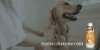 Shampoo Clareador Dr Dog - embalagem PRO Econômica 5 litros - rende mais de 160 aplicações! - Imagem 2
