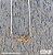 COLAR SWIN BIKE RUN| OURO - Imagem 1