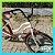 Bicicleta Zero Beach Retro P1 aro 26 - Imagem 2