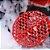 Filtro para balde de lavagem Vermelho SGCB - Imagem 2