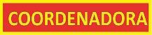 TIRAS DE CARGO - COORDENADORA - Imagem 1