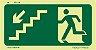 Orientação e Salvamento Fotoluminescente - S9 - Imagem 1