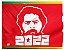 Bandeira Lula 2022 - Imagem 1