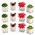 Kit 12 Mini Planta Flor Artificial Suculenta Atacado Vaso Vidro Casa Decoração Ambientes - Imagem 1