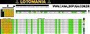 Planilha Lotomania - Esquema com Linhas de 7 Dezenas - Imagem 1
