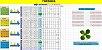 Planilha Timemania - Sistema De Redução - Imagem 1
