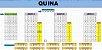 Planilha Quina - Jogue Com 75 Dezenas - Imagem 1