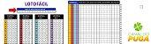 Planilha Lotofácil - Estudo Fundamental Para Montar Os Jogos - Imagem 1