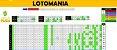Planilha Lotomania - 80 Dezenas Combinadas Em Grupos De 10 - Imagem 1