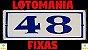 Planilha Lotomania - Esquema 100 Dezenas Com 48 Fixas - Imagem 2