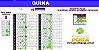 Planilha Quina - Esquema 40 Dezenas com Garantia - Imagem 1