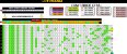 Planilha Lotomania - Esquema com 91 Dezenas Combinadas - Imagem 1