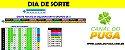 Planilha Dia de Sorte - Esquema 30 Dezenas com Redução para 12 - Imagem 1
