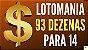 Planilha Lotomania - 93 Dezenas Combinadas em Grupos de 14 - Imagem 2