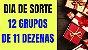 Planilha Dia de Sorte - Jogue com 12 Grupos de 11 Dezenas - Imagem 2