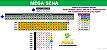 Planilha Mega Sena - Jogue com 4 Grupos de 21 Dezenas - Imagem 1