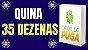Planilha Quina - 35 Dezenas Se Acertar 2 Já tem 2 Pontos - Imagem 2
