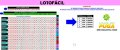 Planilha Lotofacil - Jogue com 23 Grupos de 23 Dezenas - Imagem 1