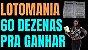 Planilha Lotomania - Esquema com 60 Dezenas pra Ganhar - Imagem 2