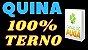 Planilha Quina - Jogue com 3 Grupos de 13 Dezenas Fechando Terno - Imagem 2
