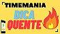 Planilha Timemania - Jogue com 10 Grupos de 23 Dezenas - Imagem 2