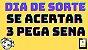 Planilha Dia de Sorte - Garante Sena Se Acertar 3 Dezenas - Imagem 2
