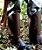 Perneira de Proteção em Couro Com Talas e Velcro - Sayro CA 14750 - Imagem 2