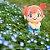Pelúcia Pokemon Misty Chokkori-san Original Takara tomy - Imagem 2