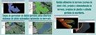 DataGeosis Módulo Agricultura de Precisão Software de Topografia - Imagem 3
