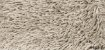 Tapete São Carlos - Galax - Imagem 17