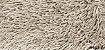 Tapete São Carlos - Galax - Imagem 9