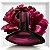 Deep Euphoria Eau De Parfum Calvin Klein  - Perfume Feminino - Imagem 3