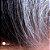 120ml Greyverse 2% & 70 Caps Pqq 11,5mg : 2 Produtos para o Fim dos Cabelos Brancos - Imagem 1