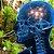 Huperzine A 200mcg : Memória, Cognição 60 Cápsulas - Imagem 1