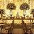 Cortina 500 Leds Luz PIsca Funções Branco Fria ou Branco Quente Festa e Casamentos M\F - Imagem 3