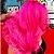 Kamaleão Color Máscara Pigmentante Boto Rosa 150ml - Imagem 2