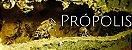 PRÓPOLIS SPRAY COM GENGIBRE 40ML - FAUNA E FLORA - Imagem 2