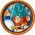 Prato Festa Dragon Ball 18Cm - 8 unidades - Festcolor - Rizzo Festas - Imagem 1