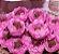 Forminha para Doces Finos - Bela Rosa Claro 40 unidades - Decora Doces - Rizzo Festas - Imagem 2