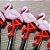 Palito p Petiscos Flamingo - 10 unidades - Rizzo Embalagens - Imagem 2