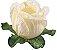 Forminha para Doces Finos - Rainha Marfin - 40 unidades - Decora Doces - Rizzo Festas - Imagem 1