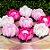 Forminha para Doces Finos - La Belle Mista 3 Tons Rosa - 30 unidades - MaxiFormas - Imagem 2