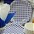 Prato Papel Biodegradável Festa Junina Azul - 10 un -  18 cm - Silver Festas - Imagem 1