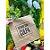 Saco Kraft Decorado Devore sem Culpa - 32x20x35cm - 10 unidades - Rizzo - Imagem 1